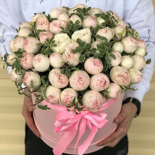 Коробки с цветами. Пионовидная роза Мэнсфилд с питтоспорумом . N638: букеты цветов на заказ Flowwow