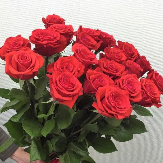 Роза Нина 21 шт