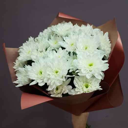 Незатейливые 5 кустовых хризантем