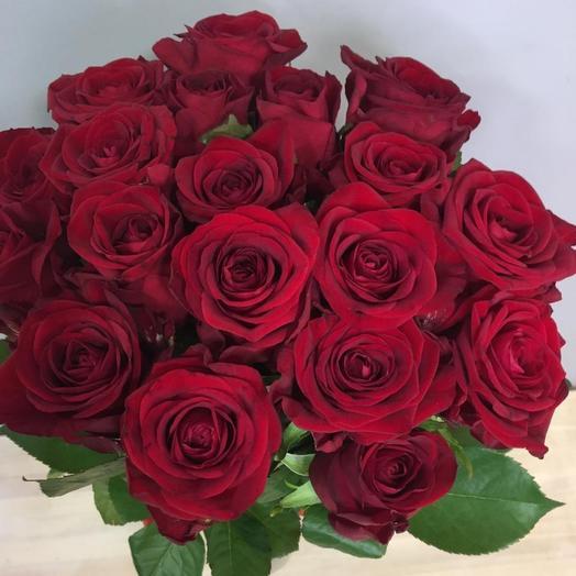 Роза 19шт (50см)