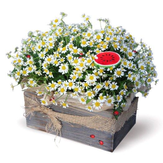 На пригорке: букеты цветов на заказ Flowwow