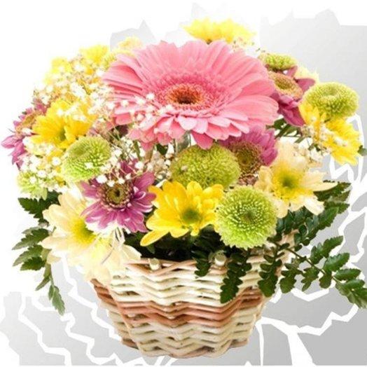 Мини Герберкаё: букеты цветов на заказ Flowwow
