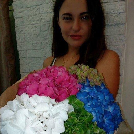 Разноцветие гортензии: букеты цветов на заказ Flowwow