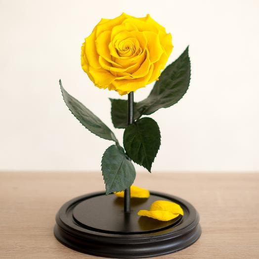 Роза в колбе Премиум желтая