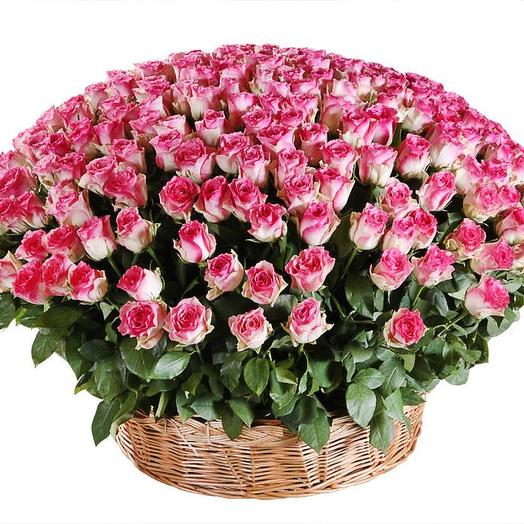 501 роза Кения: букеты цветов на заказ Flowwow