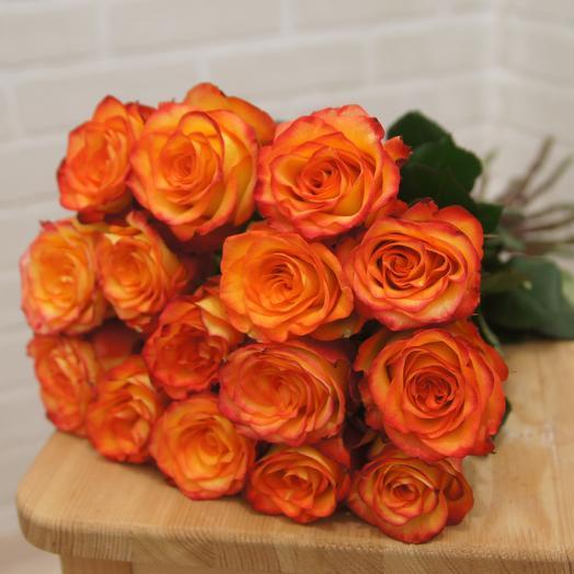 15 роз сорта Хай Меджик
