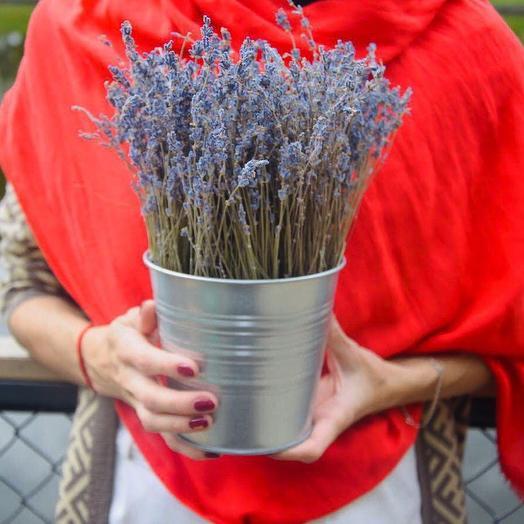 Лаванда в металлическом кашпо: букеты цветов на заказ Flowwow