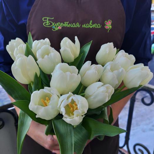 15 white tulips