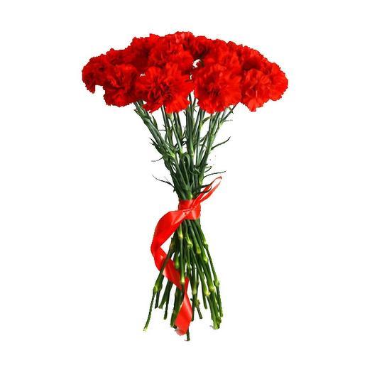 15 гвоздик: букеты цветов на заказ Flowwow