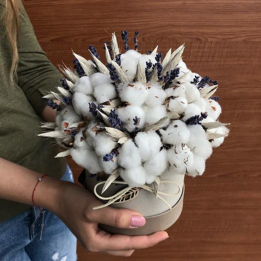 Cotton and lavender