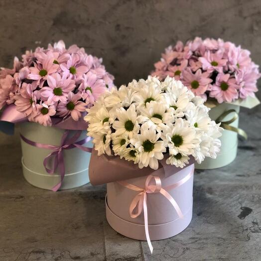 Коробка с ромашковыми хризантемами