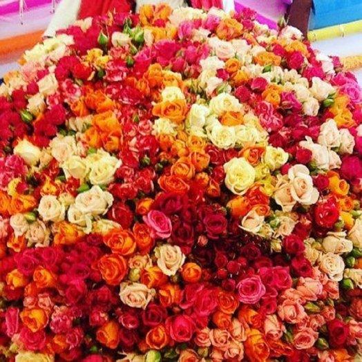 101 Кустовая роза микс: букеты цветов на заказ Flowwow