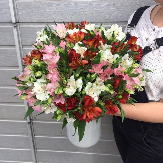 Букет из 27 разноцветных альстромерий: букеты цветов на заказ Flowwow