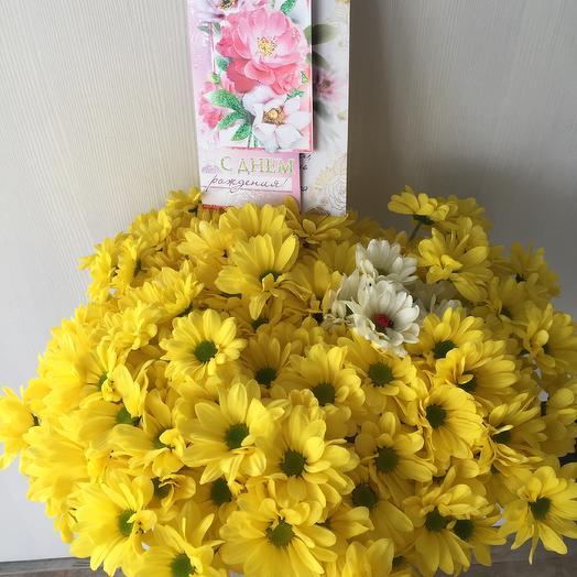 15 желтых хризантем