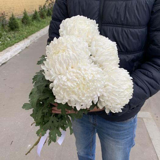 Букет из 5 белых шаровидных хризантем: букеты цветов на заказ Flowwow
