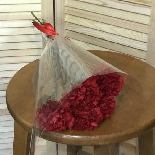 Гвоздика 5 шт: букеты цветов на заказ Flowwow