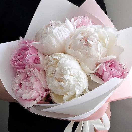 7 бело-розовых пионов