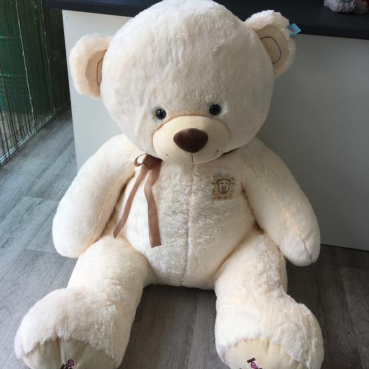 Медведь 1,70см