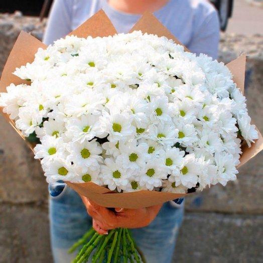 25 белых хризантем бакарди
