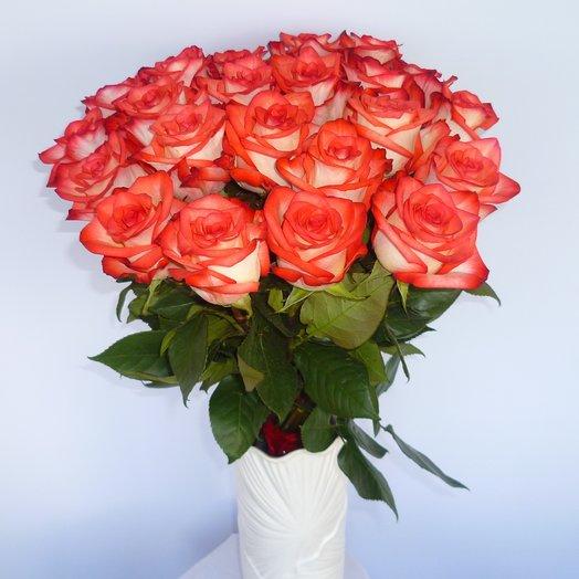 25 роз Блаш (страна Эквадор): букеты цветов на заказ Flowwow