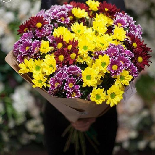 Разноцветные хризантемы: букеты цветов на заказ Flowwow