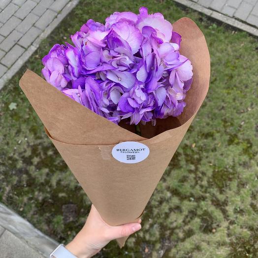 Лавандовая гортензия: букеты цветов на заказ Flowwow