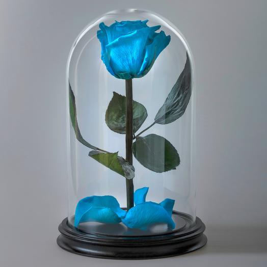 Роза в колбе голубая/тиффани премиум