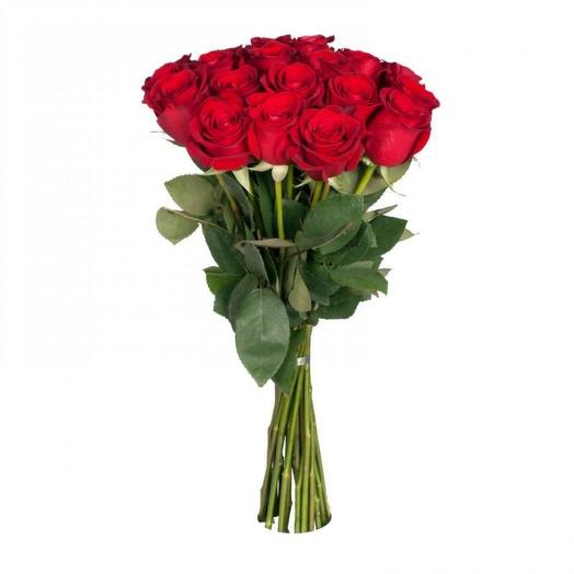 15 роз Эквадор: букеты цветов на заказ Flowwow