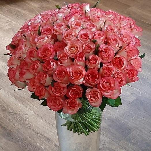 101 роза розовая