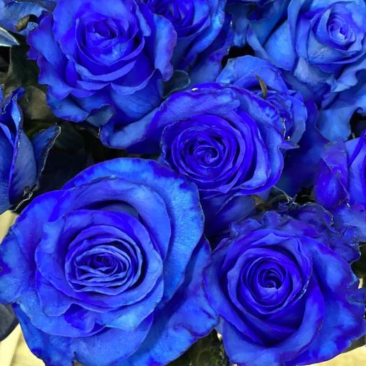 Роза Blue Died