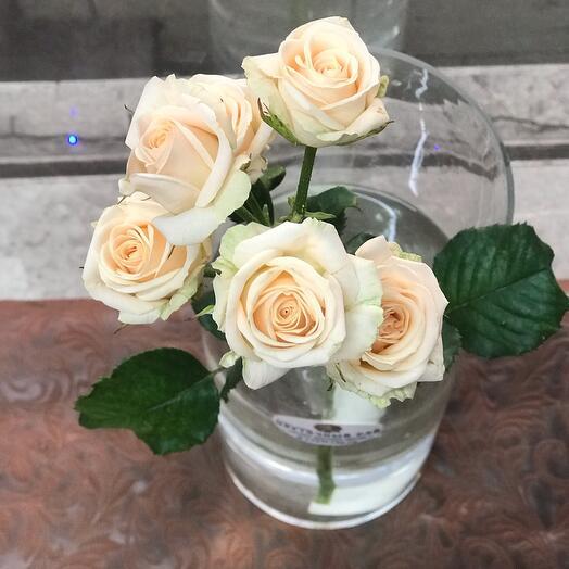 Кустовая Роза (60 см)