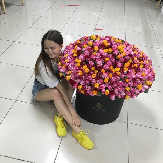 505 роз 😍