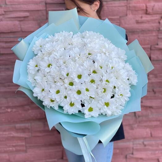 15 Кустовые хризантемы 15
