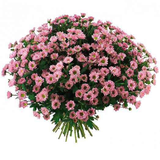 Хризантема «Сантини» макси🌸: букеты цветов на заказ Flowwow