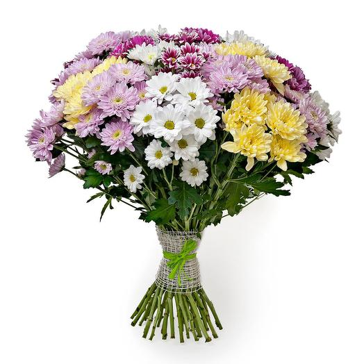 21 colorful chrysanthemum. Code 19002: flowers to order Flowwow