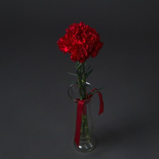 """Букет """"5 Розовых Гвоздик"""": букеты цветов на заказ Flowwow"""