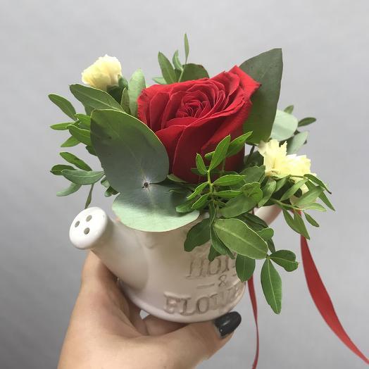 Горшочек прелестей: букеты цветов на заказ Flowwow