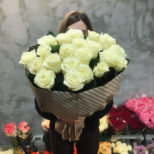 21 Роза Белая Ночь