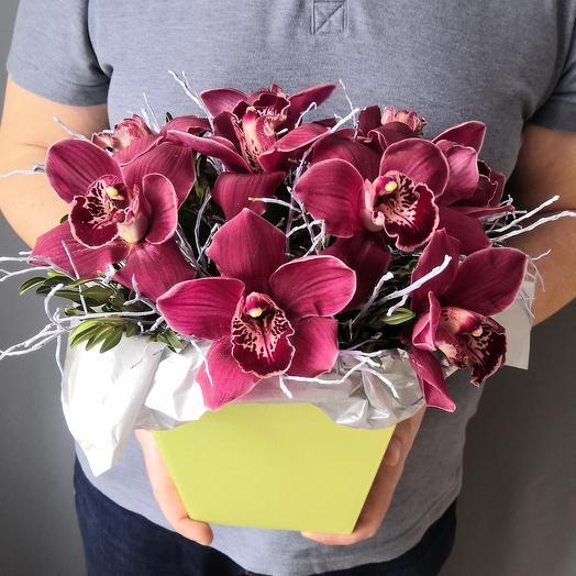 Роскошные орхидеи в коробке