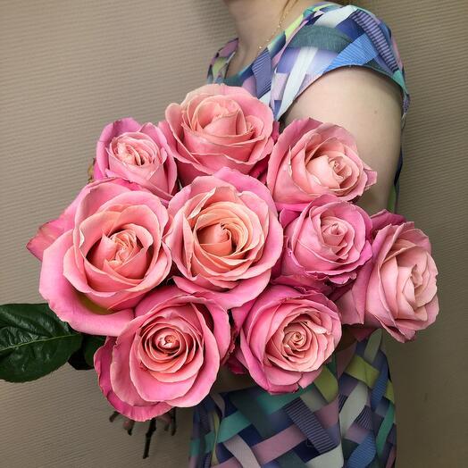 Розы Hermosa