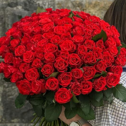 101 Роза (Ель Торо)