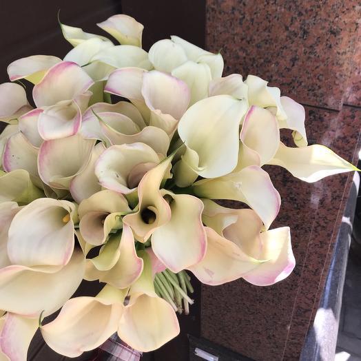 Шикарные каллы для любимой: букеты цветов на заказ Flowwow