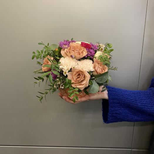 Букет в горшочке: букеты цветов на заказ Flowwow