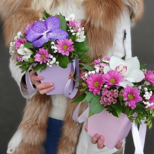 Композиция с орхидеей в плайм-пакете
