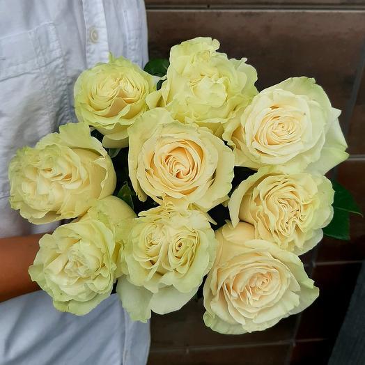 Монобукет Mondial роза одноголовая 60 см — 9 шт под ленту
