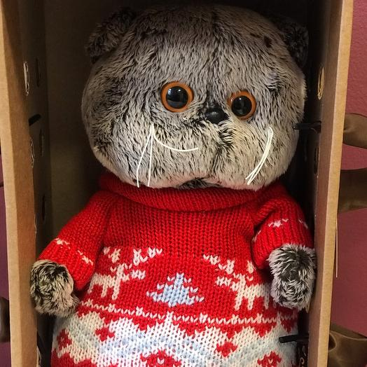 Басик в свитере