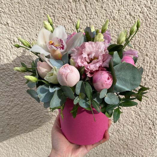 Коробка мини с орхидеей