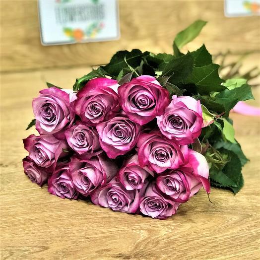 Эквадорская роза 15 шт ( 50 см) Deep Purple N337: букеты цветов на заказ Flowwow