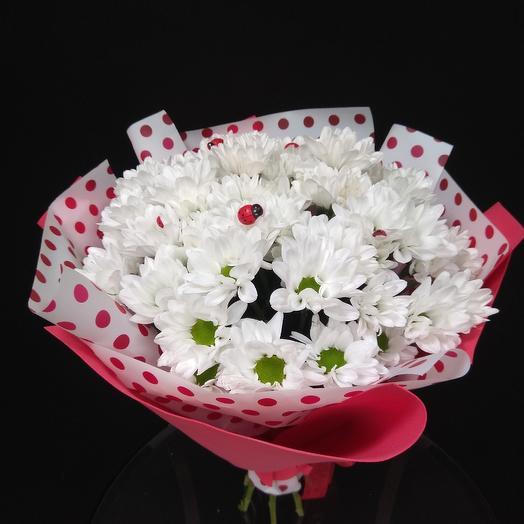 Букет из белой хризантемы с божьими коровками: букеты цветов на заказ Flowwow