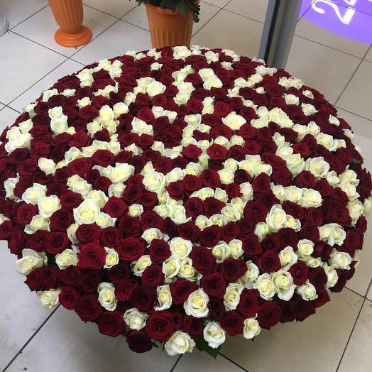 501 роза. Вип корзина: букеты цветов на заказ Flowwow